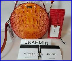 BRAHMIN PASSION FRUIT LANE + CREDIT CARD WALLET in RIBBON 2 Pieces NWT
